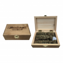 MEOWIJUANA GRAND DADDY PURR - CIGAR BOX