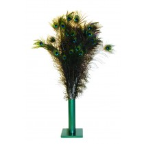 """VEE CAT TOYS - PEACOCK FEATHERS 35'-40"""""""